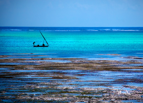 Zanzibar: photo by thinkingmagpie