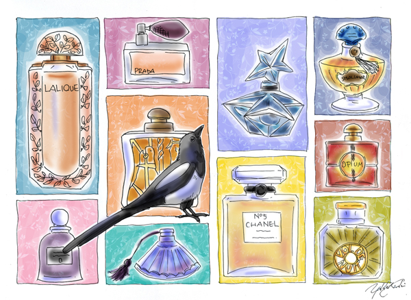 Magpie's Perfume Bottle Collection