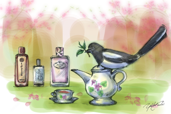 Tea Fragrances for Spring | Illustration by The Perfume Magpie