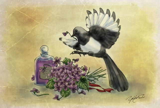 A Magpie and Violets | Illustration by The Perfume Magpie